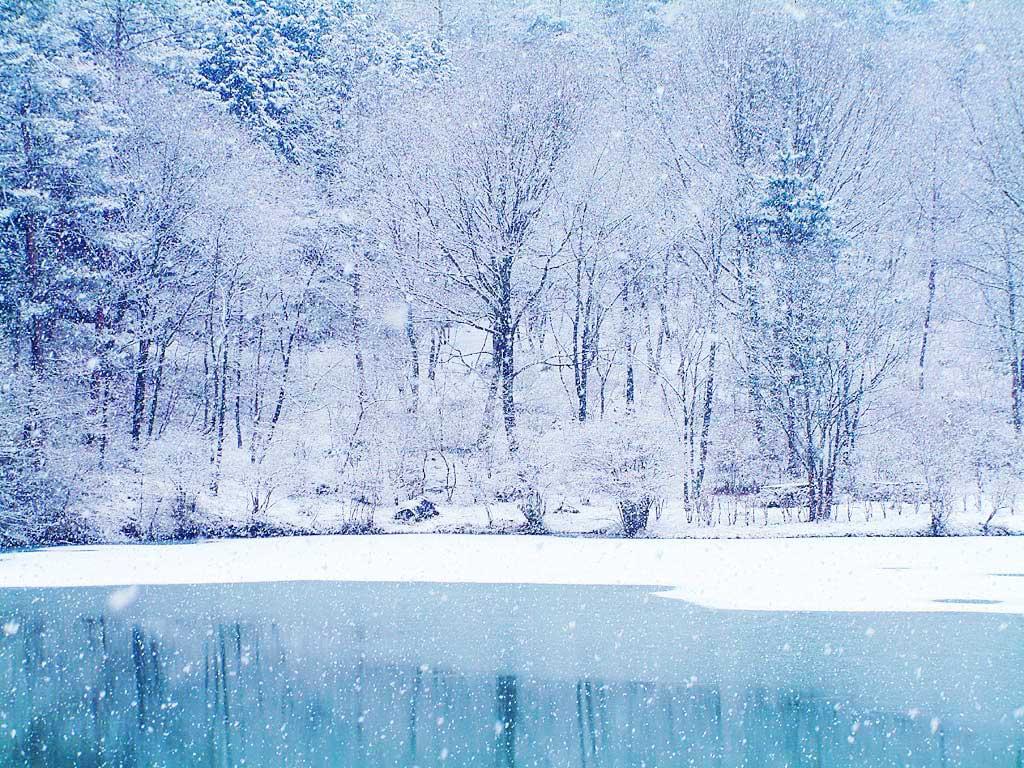 winter_wallpaper